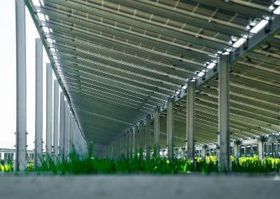 Neoen-centrale-solaire-de-Levroux-12